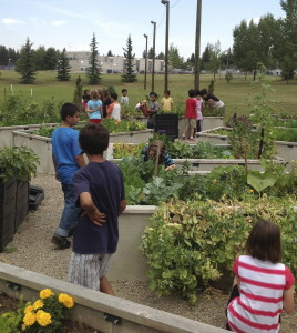 Group of children gardening