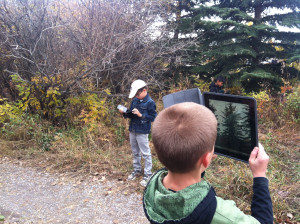 Children taking pictures of trees.